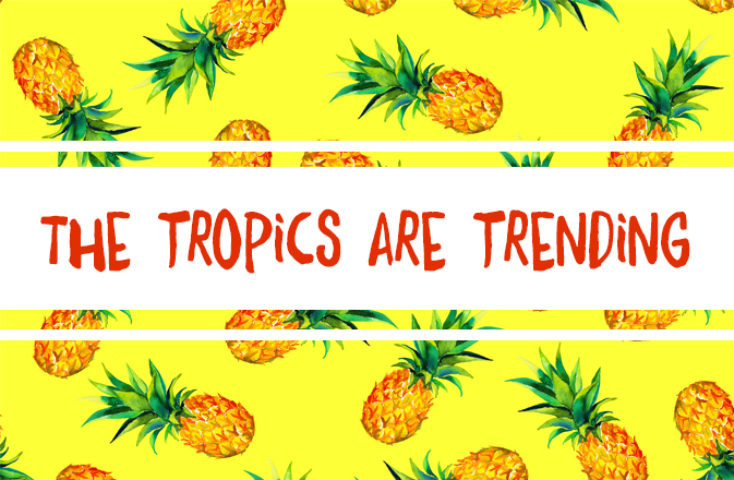 Pineapple_BlogImage_673x440_Dole
